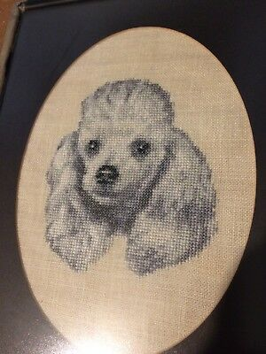 completed And Mounted cross stitch Poodle