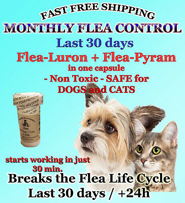 12 Fea Killer PLUS Flea Control for Dogs /Cats 2-30lb 165mg+15mg Quick results