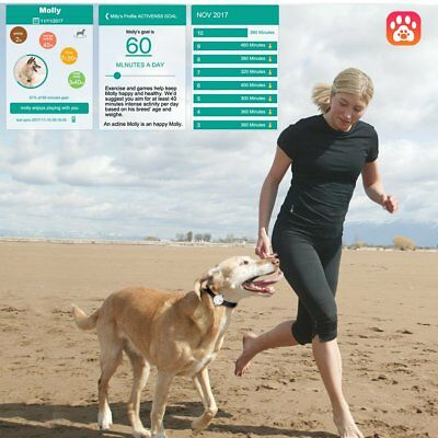 PET ACTIVITY MOOD TRACKER For Dogs And Cats ANIMALS  BLUETOOTH ANDROID APPLE IOS