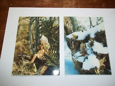 2 Bamforth Postcards.the New Cottingley Fairies Series. No. 2 & 7 Of A Set Of 8