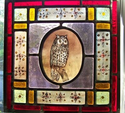 Victorian style stained glass panel with owl.