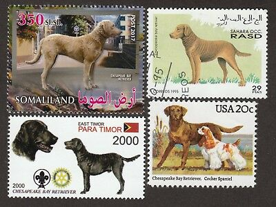 CHESAPEAKE BAY RETRIEVER *Int'l Dog Postage Stamp Collection* Unique Gift*