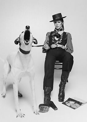 David Bowie Black White Art Silk Poster 8x12 24x36 24x43