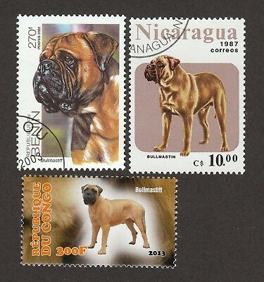 BULLMASTIFF **Int'l Dog Postage Stamp Collection ** Great Gift Idea **