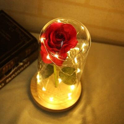 Enchanted Rose Flower Lamp Beauty and the Beast Rose in Glass Dome Unique Gift