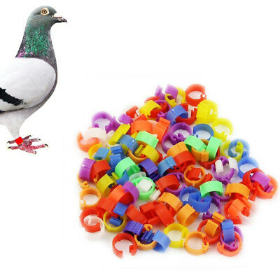 100Pcs 8mm Clip On Leg Rings for Quail Chickens Chick Pigeon Poultry Bird
