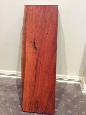 Red Gum Fiddleback  Extra Thick Craft, Luthier, Box Maker. #3