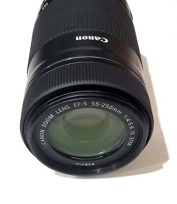 Canon EF-S 55-250mm f/4.0-5.6 IS STM Lens