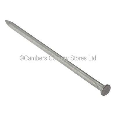 NEW Standard Round Wire Galvanised Nails 1kg Or 25kg - Sizes 25mm To 150mm