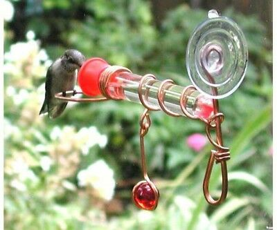 Song Bird Essentials Holland Hill Window Wonder One Copper Hummingbird Feeder
