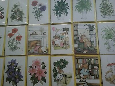 50 Every Day Blank Cards, Wholesale Joblot Greeting Cards