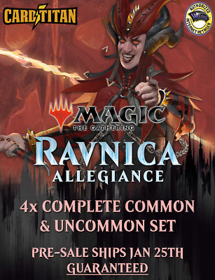 Magic MTG - Ravnica Allegiance  4x Complete Common & Uncommon Set x4 - CARDTITAN
