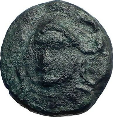 PHOKIS Central Greece AUTHENTIC Ancient 371BC Genuine Greek Coin ATHENA i74114