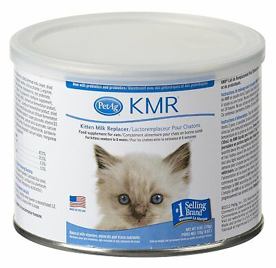 Pet Ag Kitten Milk Replacer 6 ounce | Food Supplement for Cats