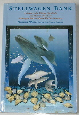 Stellwagen Bank  A Guide To The Whales, Sea Birds, And Marine Life