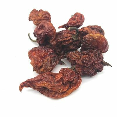 Dried Pods Carolina Reaper Chilli Worlds Hottest Chilli 100% Reaper