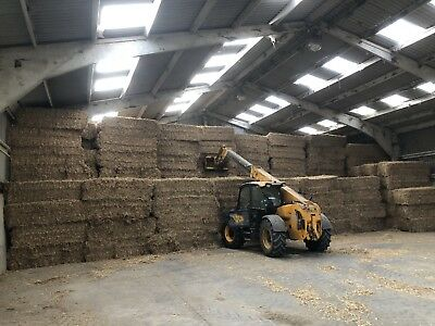 Large Wheat Straw Bales 80/70 Size 8 Foot Long. Bulk Pickup Only! Price Per Bale