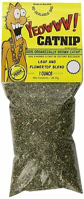 YEOWWW! Catnip 1 ounce Packet | Pure Leaf and Flowertop | For Cats and Kittens