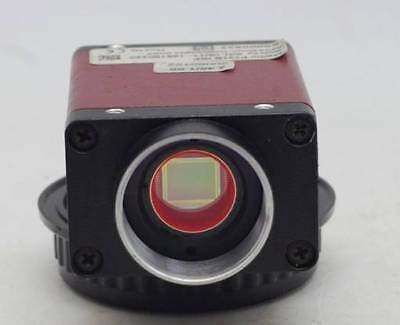 1PC USED ALLIED Marlin Industrial Camera F131B IRF #RS19