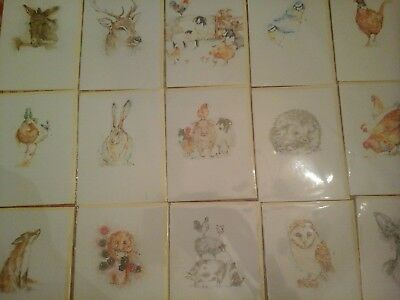 50 Top Animal Cards, Wholesale Joblot Greeting Cards