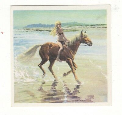Horses in the Service of Man Trade Card - Palomino
