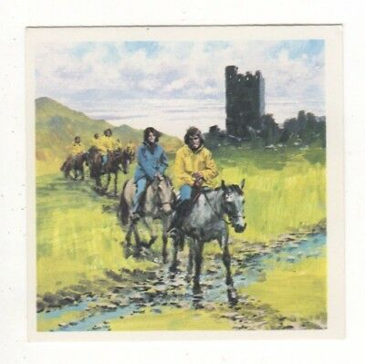 Horses in the Service of Man Trade Card - Welsh Pony Treking Horse
