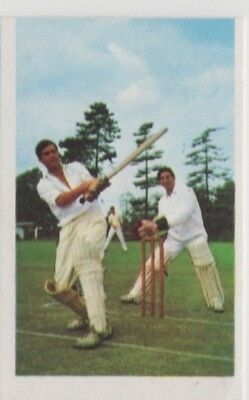 Cricket Trade Card