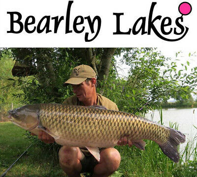 Carp Fishing Holiday in Somerset with luxury caravan accommodation