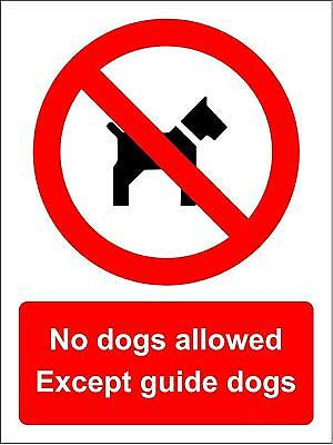 No dogs allowed Except guide dogs sign