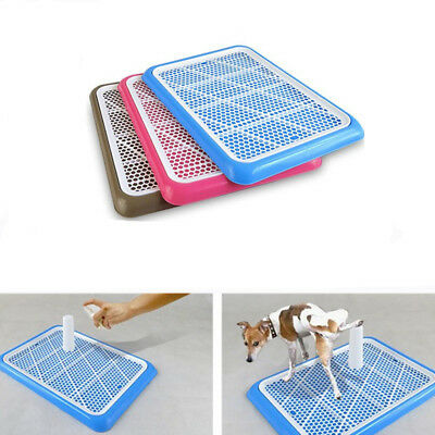 Pet Potty Trainer Mat Dog Puppy Training Pee Patch Pad In&Outdoor Toilet