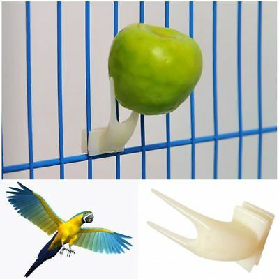 Supplies Device Feeder Set on Cage Plastic Parrot Fruit Forks Bird Feeding Tool