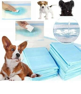 Puppy Training Pads Large 60X60 Quick Dry Absorbent Dog Pee Poo Carpet Protect