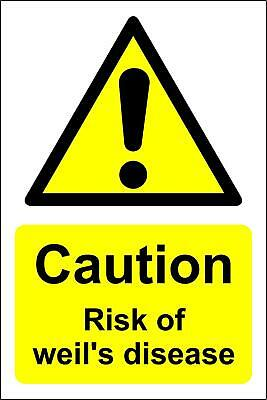 Caution risk of weil's disease Warning safety sign