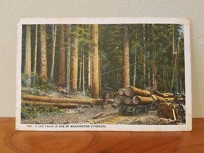 "Post Card ""A Log Train In One Of Washington's Forests"" Post Marked Bremerton..."