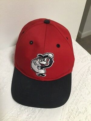 4b43863a34e9d PAWTUCKET RED SOX Hat Paws Bear Mascot Cap 47 Brand Kids One Size ...