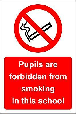 Pupils are forbidden from smoking in this school Safety sign