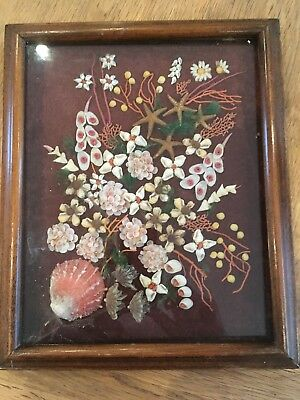 "Vintage Shell Art Picture 9"" X 11"" In Wooden Frame, Glass Front"