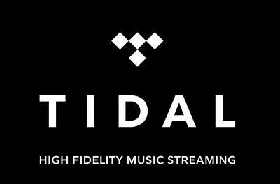 TIDAL Hi-Fi HiFi ABBONAMENTO 1 ANNO 1 YEAR SUBSCRIPTION WORLDWIDE