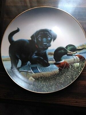 Decorative Plate  By Philip Crowe    1992