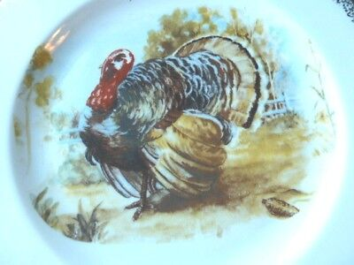 "One (1) Vintage Turkey Dinner Plate 10""  Thanksgiving Holiday 1960's"