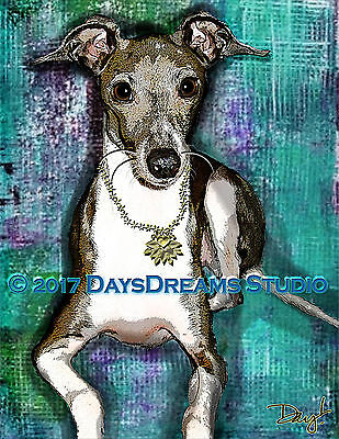 Sweet Tiny Italian Greyhound Pet Portrait Print from Original, Memorial or Gift