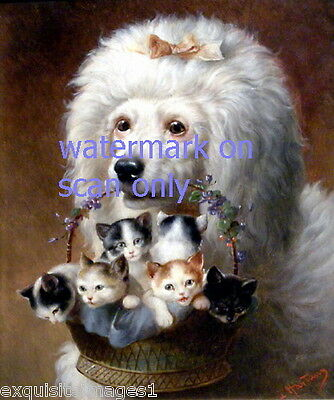 Vintage Art~White Poodle Dog Dogs Holds Basket of Kittens~ NEW Large Note Cards