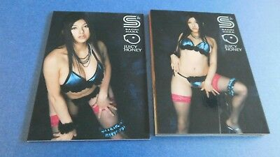Non Sport Trading Cards 15 Different Juicy Honey Saori Hara 5Th Anniversary
