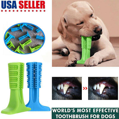 Bristly Brushing Stick World's Most Effective Toothbrush for Pet Dog Oralcare
