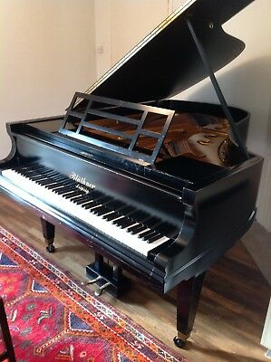 Bluthner 6'3 Grand Piano 1899 Style 7