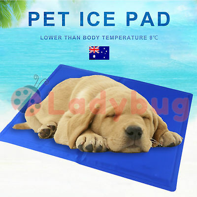 Pet Cool Gel Mat Dog Cat Bed Non-Toxic Cooling Dog Summer Pad 5 Sizes FAST POST