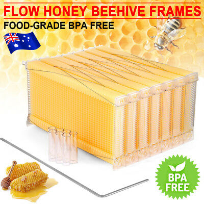 7PCS Upgraded Auto-Flow Honey Beekeeper Beehive Bee Comb Hive Frame Harvest Tool