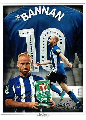 Barry BANNAN Sheffield Wednesday SWFC SIGNED 16x12 Photo Montage A AFTAL COA