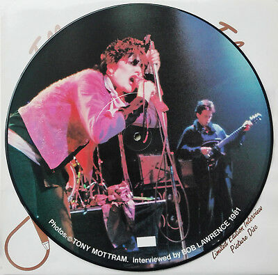 SIOUXIE & THE BANSHEES - Limited Edition Interview Picture Disc UK