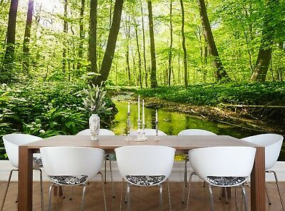 Small River in Forest  Wall Mural Photo Wallpaper GIANT WALL DECOR  Free Glue